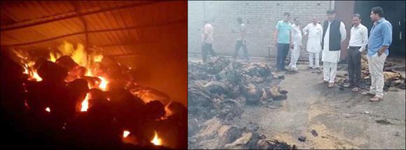 ઓલપાડના બરબોધનમાં ગોડાઉનમાં ભીષણ આગ :ડાંગરની 400 બોરીઓ બળીને ખાખ