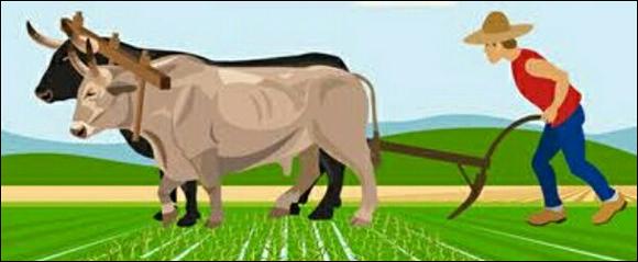 ખાતરના ભાવ વધારાનો બોજ ખેડૂતો માથે નહિઃ સબસીડી વધારવા નિર્ણય