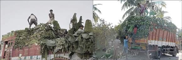 રાજપીપળામા કેળાં ભરેલી ટ્રક ઉપર બેસેલા 17 વર્ષીય તરુણને કરંટ લાગતા મોતની ઘટનામાં ટ્રક ચાલક વિરુદ્ધ  ફરીયાદ