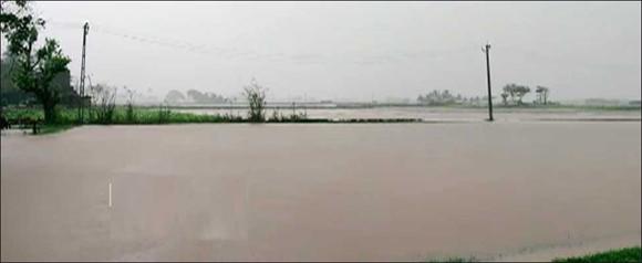 વણાકબોરી ડેમમાંથી પાણી છોડાતા મહીસાગરમાં જળસ્તર વધ્યું :ઢાઢર નદીની સપાટી વધતા ડભોઈના 10 ગામોને એલર્ટ
