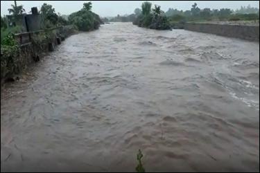 અરવલ્લી જીલ્લામાં મૂશળદાર વરસાદ :મેશ્વો ડેમ ઓવરફ્લો :માઝુમ , મેશ્વો અને બુઢેલી નદી ગાંડીતુર :19 ગામોને એલર્ટ