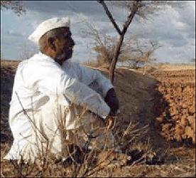 ડીસાના ભીલડીમાં દુષ્કાળમાં ખેડૂતોને ઘાસ નહીં આપતા હાલત કફોડી