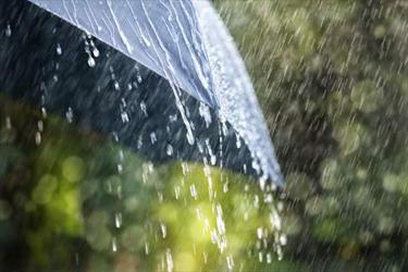 મોડીસાંજે સુરત અને ઓલપાડ પંથકમાં ક્યાંક ધોધમાર તો કેટલાક સ્થળોએ ધીમીધારે વરસાદ
