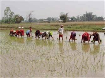 રાજ્યના વિવિધ વિસ્તારોમાં કમોસમી વરસાદના કારણોસર ખેડૂતોને મોટા પ્રમાણમાં નુકશાન પહોંચતા ખેડૂતો ચિંતાતુર બન્યા