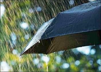 દક્ષીણ ગુજરાતમાં એન્ટ્રી મારતા મેઘરાજા  નવસારી જિલ્લામાં ૪ ઇંચ સુધીનો વરસાદ