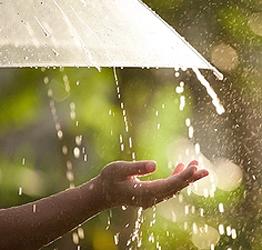 નવસારીના લુન્સીકુલ, ડેપો, જમાલપોર સહિતના વિસ્તારમાં ધીમીધારે વરસાદ