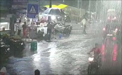 દાહોદમાં વીજળીના કડાકા ભડાકા સાથે ધોધમાર વરસાદ : વીજળી પડતાં ગાય અને ભેંસનું મોત : એક મહિલા ઘાયલ